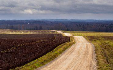 Rural gravel road in autumn